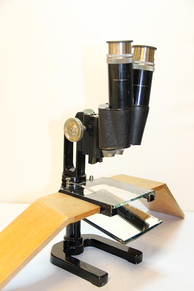 Как сделать фото из микроскопа